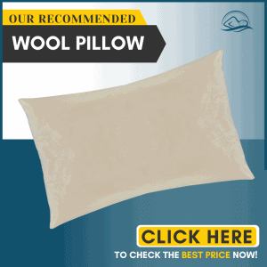"Holy Lamb Organics Woolly ""Down"" Pillow"