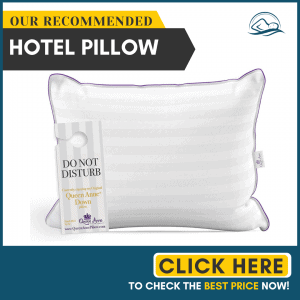 Queen Anne The Original Pillow - Famous 100% European White Goose and Duck Down Blend - Cruelty Free Luxury Hotel Pillows - Made in USA (Queen Soft)