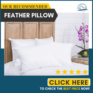 Continental Bedding 100% Goose Down Pillow